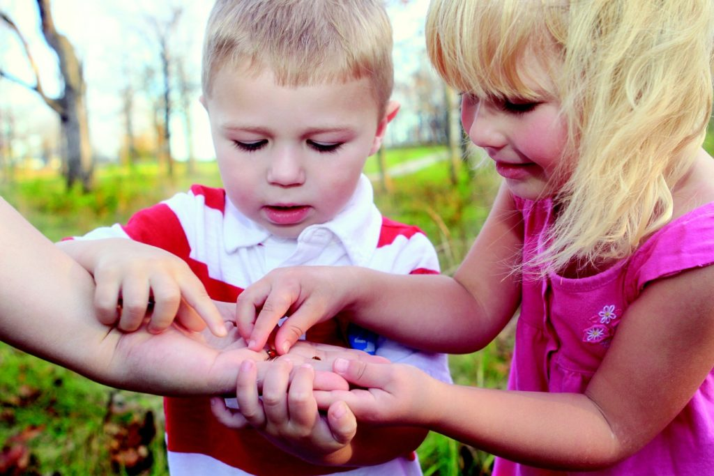 Children examining an insect.